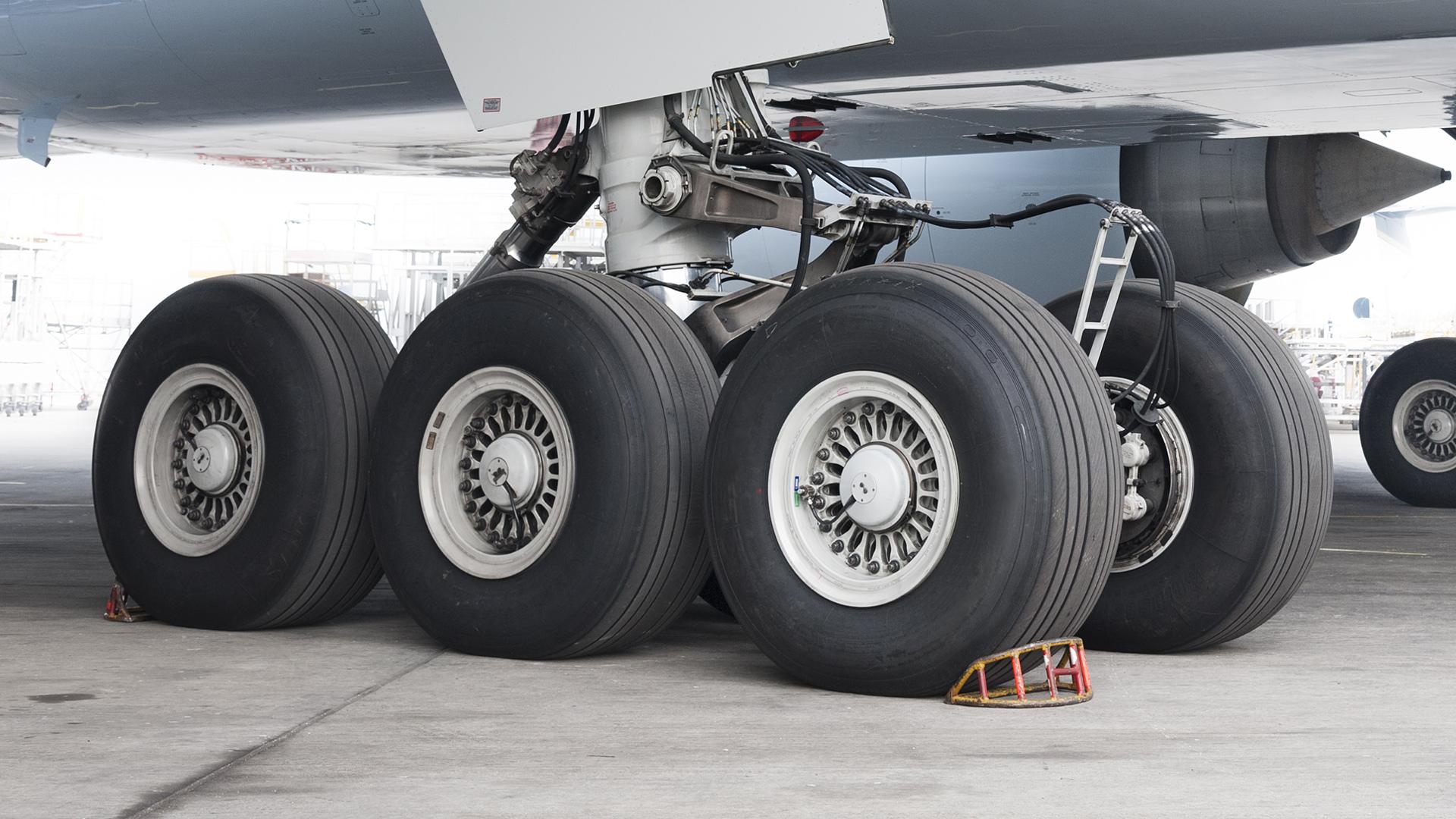 Landing gear harnessing